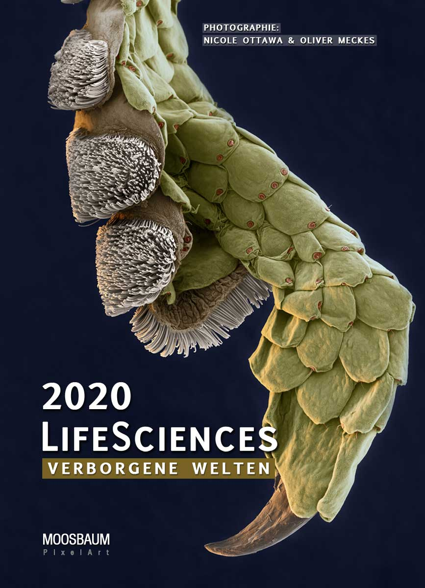 LifeSciences 2020 Titel (c) eyeofscience